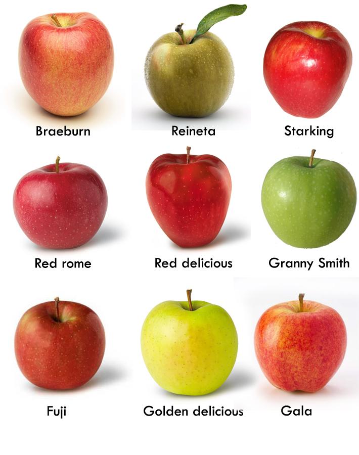 Manzana beneficios y propiedades salud globalite for Tipos de arboles y caracteristicas