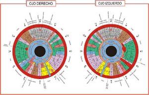 iridiologia 1